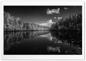 Finland Forest Lake Black and White HD Wide Wallpaper for Widescreen