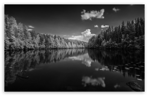 Finland Forest Lake Black and White ❤ 4K UHD Wallpaper for Wide 16:10 5:3 Widescreen WHXGA WQXGA WUXGA WXGA WGA ; 4K UHD 16:9 Ultra High Definition 2160p 1440p 1080p 900p 720p ; UHD 16:9 2160p 1440p 1080p 900p 720p ; Standard 4:3 5:4 3:2 Fullscreen UXGA XGA SVGA QSXGA SXGA DVGA HVGA HQVGA ( Apple PowerBook G4 iPhone 4 3G 3GS iPod Touch ) ; Smartphone 5:3 WGA ; Tablet 1:1 ; iPad 1/2/Mini ; Mobile 4:3 5:3 3:2 16:9 5:4 - UXGA XGA SVGA WGA DVGA HVGA HQVGA ( Apple PowerBook G4 iPhone 4 3G 3GS iPod Touch ) 2160p 1440p 1080p 900p 720p QSXGA SXGA ; Dual 16:10 5:3 16:9 4:3 5:4 WHXGA WQXGA WUXGA WXGA WGA 2160p 1440p 1080p 900p 720p UXGA XGA SVGA QSXGA SXGA ;