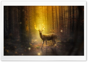 Fire Deer Fantasy Art HD Wide Wallpaper for 4K UHD Widescreen desktop & smartphone