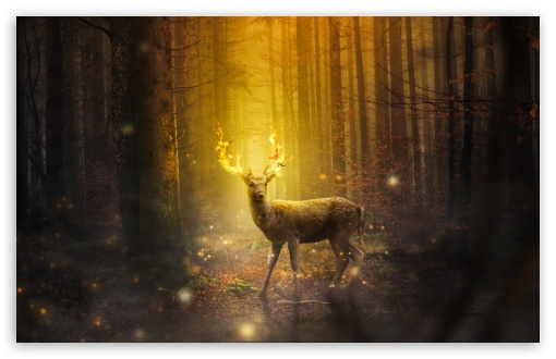 Download Fire Deer Fantasy Art HD Wallpaper