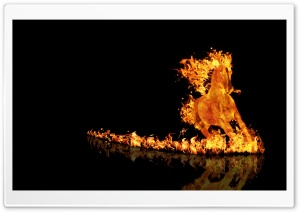 Fire Horse HD Wide Wallpaper for Widescreen