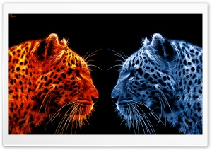 Fire Leopard vs Ice Leopard HD Wide Wallpaper for 4K UHD Widescreen desktop & smartphone