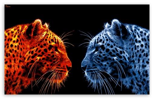 Fire Leopard vs Ice Leopard ❤ 4K UHD Wallpaper for Wide 16:10 5:3 Widescreen WHXGA WQXGA WUXGA WXGA WGA ; 4K UHD 16:9 Ultra High Definition 2160p 1440p 1080p 900p 720p ; Mobile 5:3 - WGA ;