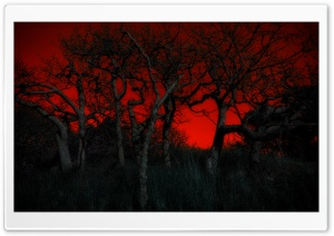 Fire Sky HD Wide Wallpaper for Widescreen