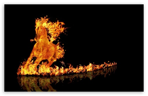 Fire Unicorn UltraHD Wallpaper for Wide 16:10 5:3 Widescreen WHXGA WQXGA WUXGA WXGA WGA ; 8K UHD TV 16:9 Ultra High Definition 2160p 1440p 1080p 900p 720p ; Standard 4:3 5:4 3:2 Fullscreen UXGA XGA SVGA QSXGA SXGA DVGA HVGA HQVGA ( Apple PowerBook G4 iPhone 4 3G 3GS iPod Touch ) ; Smartphone 16:9 3:2 5:3 2160p 1440p 1080p 900p 720p DVGA HVGA HQVGA ( Apple PowerBook G4 iPhone 4 3G 3GS iPod Touch ) WGA ; Tablet 1:1 ; iPad 1/2/Mini ; Mobile 4:3 5:3 3:2 16:9 5:4 - UXGA XGA SVGA WGA DVGA HVGA HQVGA ( Apple PowerBook G4 iPhone 4 3G 3GS iPod Touch ) 2160p 1440p 1080p 900p 720p QSXGA SXGA ;