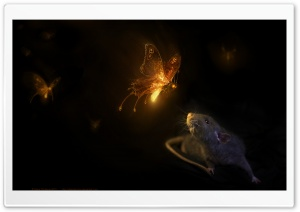 Firefly HD Wide Wallpaper for Widescreen
