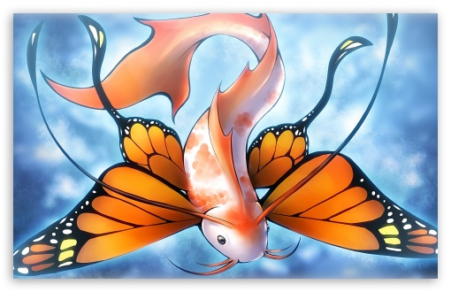 Fish Butterfly HD wallpaper for Wide 16:10 Widescreen WHXGA WQXGA WUXGA WXGA ; HD 16:9 High Definition WQHD QWXGA 1080p 900p 720p QHD nHD ; Mobile 16:9 - WQHD QWXGA 1080p 900p 720p QHD nHD ;