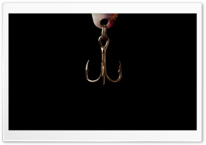 Fish Hook HD Wide Wallpaper for Widescreen
