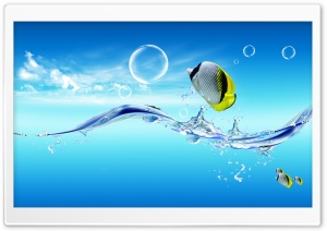Fish Jumping Out Of The Water HD Wide Wallpaper for Widescreen