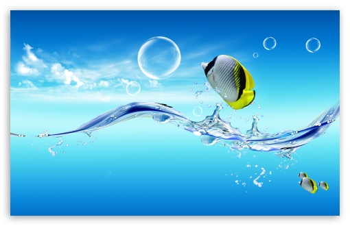 Fish Jumping Out Of The Water ❤ 4K UHD Wallpaper for Wide 16:10 5:3 Widescreen WHXGA WQXGA WUXGA WXGA WGA ; Standard 4:3 3:2 Fullscreen UXGA XGA SVGA DVGA HVGA HQVGA ( Apple PowerBook G4 iPhone 4 3G 3GS iPod Touch ) ; Tablet 1:1 ; iPad 1/2/Mini ; Mobile 4:3 5:3 3:2 16:9 5:4 - UXGA XGA SVGA WGA DVGA HVGA HQVGA ( Apple PowerBook G4 iPhone 4 3G 3GS iPod Touch ) 2160p 1440p 1080p 900p 720p QSXGA SXGA ;