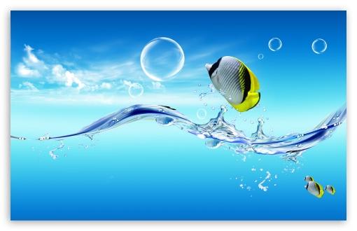 Fish Jumping Out Of The Water HD wallpaper for Wide 16:10 5:3 Widescreen WHXGA WQXGA WUXGA WXGA WGA ; Standard 4:3 3:2 Fullscreen UXGA XGA SVGA DVGA HVGA HQVGA devices ( Apple PowerBook G4 iPhone 4 3G 3GS iPod Touch ) ; Tablet 1:1 ; iPad 1/2/Mini ; Mobile 4:3 5:3 3:2 16:9 5:4 - UXGA XGA SVGA WGA DVGA HVGA HQVGA devices ( Apple PowerBook G4 iPhone 4 3G 3GS iPod Touch ) WQHD QWXGA 1080p 900p 720p QHD nHD QSXGA SXGA ;