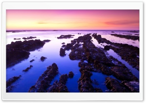 Fitzgerald Low Tide HD Wide Wallpaper for Widescreen