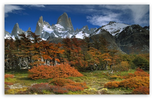 Fitzroy And Beech Trees In Autumn Los Glaciares National Park Patagonia Argentina HD wallpaper for Wide 16:10 5:3 Widescreen WHXGA WQXGA WUXGA WXGA WGA ; HD 16:9 High Definition WQHD QWXGA 1080p 900p 720p QHD nHD ; Standard 4:3 5:4 3:2 Fullscreen UXGA XGA SVGA QSXGA SXGA DVGA HVGA HQVGA devices ( Apple PowerBook G4 iPhone 4 3G 3GS iPod Touch ) ; Tablet 1:1 ; iPad 1/2/Mini ; Mobile 4:3 5:3 3:2 16:9 5:4 - UXGA XGA SVGA WGA DVGA HVGA HQVGA devices ( Apple PowerBook G4 iPhone 4 3G 3GS iPod Touch ) WQHD QWXGA 1080p 900p 720p QHD nHD QSXGA SXGA ;