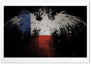Flag Eagles Chile HD Wide Wallpaper for Widescreen