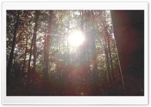 Flare Ultra HD Wallpaper for 4K UHD Widescreen desktop, tablet & smartphone