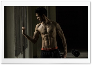 Flex Ultra HD Wallpaper for 4K UHD Widescreen desktop, tablet & smartphone