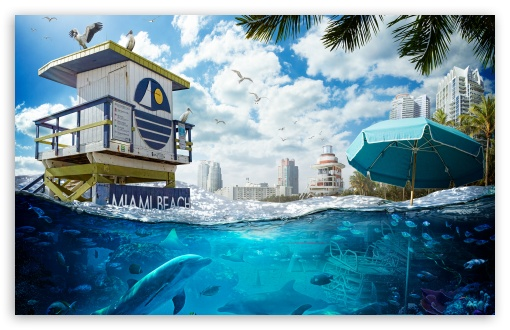 Download Florida Sea Level Rise Global Warming UltraHD Wallpaper