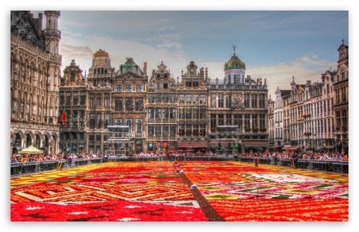 Flower Carpet - Grand Place - Brussels, Belgium ❤ 4K UHD Wallpaper for Wide 16:10 5:3 Widescreen WHXGA WQXGA WUXGA WXGA WGA ; 4K UHD 16:9 Ultra High Definition 2160p 1440p 1080p 900p 720p ; UHD 16:9 2160p 1440p 1080p 900p 720p ; Standard 3:2 Fullscreen DVGA HVGA HQVGA ( Apple PowerBook G4 iPhone 4 3G 3GS iPod Touch ) ; Mobile 5:3 3:2 16:9 - WGA DVGA HVGA HQVGA ( Apple PowerBook G4 iPhone 4 3G 3GS iPod Touch ) 2160p 1440p 1080p 900p 720p ;