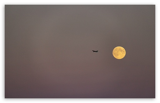Fly Me to the Moon ❤ 4K UHD Wallpaper for Wide 16:10 5:3 Widescreen WHXGA WQXGA WUXGA WXGA WGA ; 4K UHD 16:9 Ultra High Definition 2160p 1440p 1080p 900p 720p ; UHD 16:9 2160p 1440p 1080p 900p 720p ; Standard 4:3 5:4 3:2 Fullscreen UXGA XGA SVGA QSXGA SXGA DVGA HVGA HQVGA ( Apple PowerBook G4 iPhone 4 3G 3GS iPod Touch ) ; Smartphone 3:2 5:3 DVGA HVGA HQVGA ( Apple PowerBook G4 iPhone 4 3G 3GS iPod Touch ) WGA ; Tablet 1:1 ; iPad 1/2/Mini ; Mobile 4:3 5:3 3:2 16:9 5:4 - UXGA XGA SVGA WGA DVGA HVGA HQVGA ( Apple PowerBook G4 iPhone 4 3G 3GS iPod Touch ) 2160p 1440p 1080p 900p 720p QSXGA SXGA ;