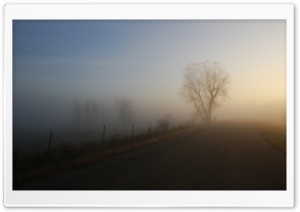 Fog Ultra HD Wallpaper for 4K UHD Widescreen desktop, tablet & smartphone