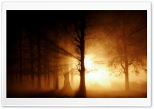 Fog Ghost HD Wide Wallpaper for Widescreen