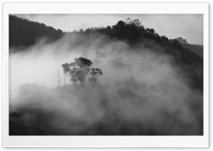 Foggy Black And White Landscapes HD Wide Wallpaper for Widescreen