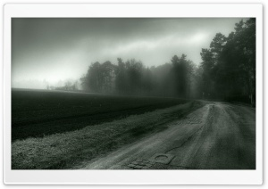 Foggy Country Road HD Wide Wallpaper for Widescreen