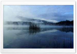 Foggy Lake HD Wide Wallpaper for 4K UHD Widescreen desktop & smartphone