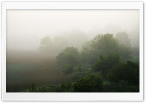 Foggy Landscape, Bulgaria HD Wide Wallpaper for Widescreen