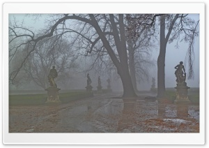 Foggy Park HD Wide Wallpaper for Widescreen