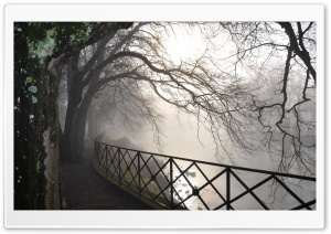 Foggy River HD Wide Wallpaper for Widescreen