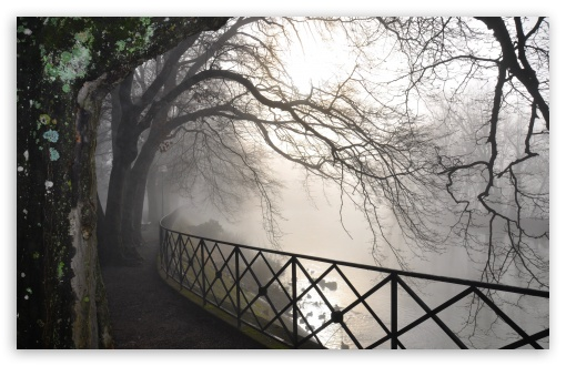 Foggy River HD wallpaper for Wide 16:10 5:3 Widescreen WHXGA WQXGA WUXGA WXGA WGA ; HD 16:9 High Definition WQHD QWXGA 1080p 900p 720p QHD nHD ; UHD 16:9 WQHD QWXGA 1080p 900p 720p QHD nHD ; Standard 4:3 5:4 3:2 Fullscreen UXGA XGA SVGA QSXGA SXGA DVGA HVGA HQVGA devices ( Apple PowerBook G4 iPhone 4 3G 3GS iPod Touch ) ; Tablet 1:1 ; iPad 1/2/Mini ; Mobile 4:3 5:3 3:2 16:9 5:4 - UXGA XGA SVGA WGA DVGA HVGA HQVGA devices ( Apple PowerBook G4 iPhone 4 3G 3GS iPod Touch ) WQHD QWXGA 1080p 900p 720p QHD nHD QSXGA SXGA ; Dual 5:4 QSXGA SXGA ;