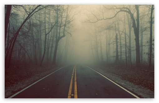 Foggy Road HD wallpaper for Wide 16:10 5:3 Widescreen WHXGA WQXGA WUXGA WXGA WGA ; HD 16:9 High Definition WQHD QWXGA 1080p 900p 720p QHD nHD ; Standard 4:3 5:4 Fullscreen UXGA XGA SVGA QSXGA SXGA ; MS 3:2 DVGA HVGA HQVGA devices ( Apple PowerBook G4 iPhone 4 3G 3GS iPod Touch ) ; Mobile VGA WVGA iPhone iPad PSP Phone - VGA QVGA Smartphone ( PocketPC GPS iPod Zune BlackBerry HTC Samsung LG Nokia Eten Asus ) WVGA WQVGA Smartphone ( HTC Samsung Sony Ericsson LG Vertu MIO ) HVGA Smartphone ( Apple iPhone iPod BlackBerry HTC Samsung Nokia ) Sony PSP Zune HD Zen ; Tablet 1&2 Android ; Dual 5:4 QSXGA SXGA ;