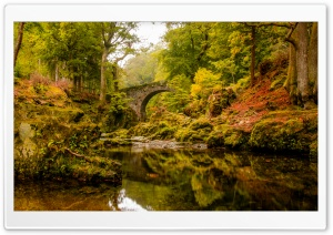 Foley's Bridge, Autumn HD Wide Wallpaper for Widescreen