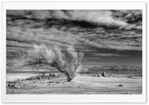 Folsom Drought HD Wide Wallpaper for Widescreen