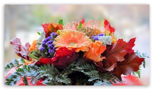 FoMef - Flower Mix 4K ❤ 4K UHD Wallpaper for 4K UHD 16:9 Ultra High Definition 2160p 1440p 1080p 900p 720p ; UHD 16:9 2160p 1440p 1080p 900p 720p ; Tablet 1:1 ; Mobile 16:9 - 2160p 1440p 1080p 900p 720p ;
