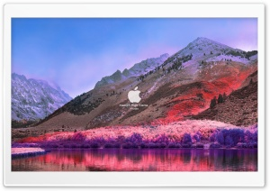 FoMef - macOS High Sierra Purble HD Wide Wallpaper for Widescreen