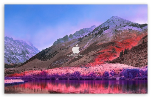 Download FoMef - macOS High Sierra Purble HD Wallpaper