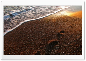 Foot Prints On The Sand HD Wide Wallpaper for Widescreen