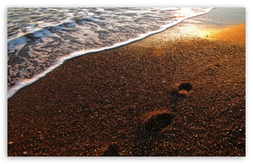 Foot Prints On The Sand ❤ 4K UHD Wallpaper for Wide 16:10 5:3 Widescreen WHXGA WQXGA WUXGA WXGA WGA ; 4K UHD 16:9 Ultra High Definition 2160p 1440p 1080p 900p 720p ; Standard 4:3 5:4 3:2 Fullscreen UXGA XGA SVGA QSXGA SXGA DVGA HVGA HQVGA ( Apple PowerBook G4 iPhone 4 3G 3GS iPod Touch ) ; Tablet 1:1 ; iPad 1/2/Mini ; Mobile 4:3 5:3 3:2 16:9 5:4 - UXGA XGA SVGA WGA DVGA HVGA HQVGA ( Apple PowerBook G4 iPhone 4 3G 3GS iPod Touch ) 2160p 1440p 1080p 900p 720p QSXGA SXGA ; Dual 16:10 5:3 16:9 4:3 5:4 WHXGA WQXGA WUXGA WXGA WGA 2160p 1440p 1080p 900p 720p UXGA XGA SVGA QSXGA SXGA ;