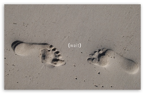Footprints HD wallpaper for Wide 16:10 5:3 Widescreen WHXGA WQXGA WUXGA WXGA WGA ; HD 16:9 High Definition WQHD QWXGA 1080p 900p 720p QHD nHD ; Standard 3:2 Fullscreen DVGA HVGA HQVGA devices ( Apple PowerBook G4 iPhone 4 3G 3GS iPod Touch ) ; Mobile 5:3 3:2 16:9 - WGA DVGA HVGA HQVGA devices ( Apple PowerBook G4 iPhone 4 3G 3GS iPod Touch ) WQHD QWXGA 1080p 900p 720p QHD nHD ; Dual 16:10 5:3 16:9 4:3 5:4 WHXGA WQXGA WUXGA WXGA WGA WQHD QWXGA 1080p 900p 720p QHD nHD UXGA XGA SVGA QSXGA SXGA ;