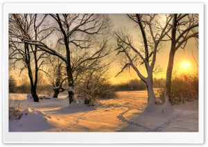 Footsteps In Snow Ultra HD Wallpaper for 4K UHD Widescreen desktop, tablet & smartphone
