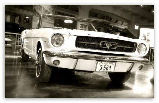 Ford Mustang 1967 HD wallpaper for Wide 16:10 5:3 Widescreen WHXGA WQXGA WUXGA WXGA WGA ; HD 16:9 High Definition WQHD QWXGA 1080p 900p 720p QHD nHD ; UHD 16:9 WQHD QWXGA 1080p 900p 720p QHD nHD ; Standard 4:3 3:2 Fullscreen UXGA XGA SVGA DVGA HVGA HQVGA devices ( Apple PowerBook G4 iPhone 4 3G 3GS iPod Touch ) ; iPad 1/2/Mini ; Mobile 4:3 5:3 3:2 16:9 - UXGA XGA SVGA WGA DVGA HVGA HQVGA devices ( Apple PowerBook G4 iPhone 4 3G 3GS iPod Touch ) WQHD QWXGA 1080p 900p 720p QHD nHD ;