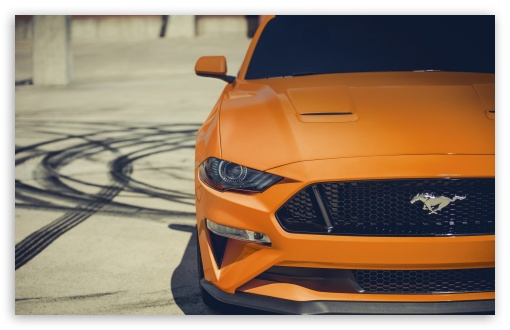 Ford Mustang 4K UltraHD Wallpaper for Wide 16:10 5:3 Widescreen WHXGA WQXGA WUXGA WXGA WGA ; UltraWide 21:9 24:10 ; 8K UHD TV 16:9 Ultra High Definition 2160p 1440p 1080p 900p 720p ; UHD 16:9 2160p 1440p 1080p 900p 720p ; Standard 4:3 5:4 3:2 Fullscreen UXGA XGA SVGA QSXGA SXGA DVGA HVGA HQVGA ( Apple PowerBook G4 iPhone 4 3G 3GS iPod Touch ) ; Smartphone 16:9 3:2 5:3 2160p 1440p 1080p 900p 720p DVGA HVGA HQVGA ( Apple PowerBook G4 iPhone 4 3G 3GS iPod Touch ) WGA ; Tablet 1:1 ; iPad 1/2/Mini ; Mobile 4:3 5:3 3:2 16:9 5:4 - UXGA XGA SVGA WGA DVGA HVGA HQVGA ( Apple PowerBook G4 iPhone 4 3G 3GS iPod Touch ) 2160p 1440p 1080p 900p 720p QSXGA SXGA ;