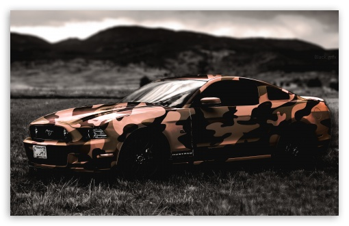 Ford Mustang ❤ 4K UHD Wallpaper for Wide 16:10 5:3 Widescreen WHXGA WQXGA WUXGA WXGA WGA ; 4K UHD 16:9 Ultra High Definition 2160p 1440p 1080p 900p 720p ; UHD 16:9 2160p 1440p 1080p 900p 720p ; Mobile 5:3 16:9 - WGA 2160p 1440p 1080p 900p 720p ; Dual 5:4 QSXGA SXGA ;