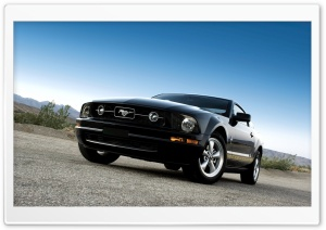 Ford Mustang Black HD Wide Wallpaper for Widescreen