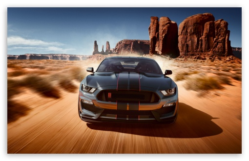 Ford Mustang Shelby GT350 ❤ 4K UHD Wallpaper for Wide 16:10 5:3 Widescreen WHXGA WQXGA WUXGA WXGA WGA ; UltraWide 21:9 ; 4K UHD 16:9 Ultra High Definition 2160p 1440p 1080p 900p 720p ; Standard 4:3 5:4 3:2 Fullscreen UXGA XGA SVGA QSXGA SXGA DVGA HVGA HQVGA ( Apple PowerBook G4 iPhone 4 3G 3GS iPod Touch ) ; Smartphone 3:2 DVGA HVGA HQVGA ( Apple PowerBook G4 iPhone 4 3G 3GS iPod Touch ) ; Tablet 1:1 ; iPad 1/2/Mini ; Mobile 4:3 5:3 3:2 16:9 5:4 - UXGA XGA SVGA WGA DVGA HVGA HQVGA ( Apple PowerBook G4 iPhone 4 3G 3GS iPod Touch ) 2160p 1440p 1080p 900p 720p QSXGA SXGA ; Dual 16:10 5:3 16:9 4:3 5:4 3:2 WHXGA WQXGA WUXGA WXGA WGA 2160p 1440p 1080p 900p 720p UXGA XGA SVGA QSXGA SXGA DVGA HVGA HQVGA ( Apple PowerBook G4 iPhone 4 3G 3GS iPod Touch ) ;