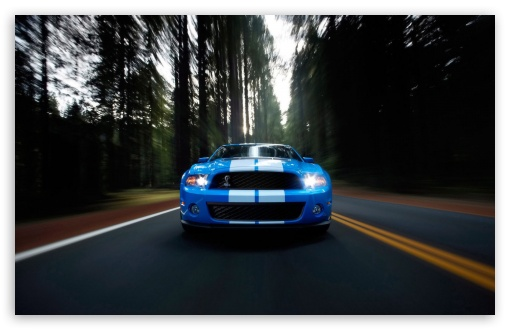 Ford Shelby Blue ❤ 4K UHD Wallpaper for Wide 16:10 5:3 Widescreen WHXGA WQXGA WUXGA WXGA WGA ; 4K UHD 16:9 Ultra High Definition 2160p 1440p 1080p 900p 720p ; Standard 4:3 5:4 3:2 Fullscreen UXGA XGA SVGA QSXGA SXGA DVGA HVGA HQVGA ( Apple PowerBook G4 iPhone 4 3G 3GS iPod Touch ) ; Tablet 1:1 ; iPad 1/2/Mini ; Mobile 4:3 5:3 3:2 16:9 5:4 - UXGA XGA SVGA WGA DVGA HVGA HQVGA ( Apple PowerBook G4 iPhone 4 3G 3GS iPod Touch ) 2160p 1440p 1080p 900p 720p QSXGA SXGA ; Dual 16:10 5:3 16:9 4:3 5:4 WHXGA WQXGA WUXGA WXGA WGA 2160p 1440p 1080p 900p 720p UXGA XGA SVGA QSXGA SXGA ;