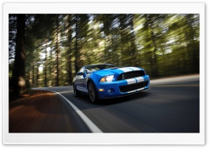 Ford Shelby GT500 HD Wide Wallpaper for Widescreen