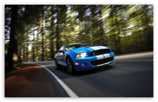 Ford Shelby GT500 HD wallpaper for Standard 4:3 5:4 Fullscreen UXGA XGA SVGA QSXGA SXGA ; Wide 16:10 5:3 Widescreen WHXGA WQXGA WUXGA WXGA WGA ; HD 16:9 High Definition WQHD QWXGA 1080p 900p 720p QHD nHD ; Other 3:2 DVGA HVGA HQVGA devices ( Apple PowerBook G4 iPhone 4 3G 3GS iPod Touch ) ; Mobile VGA WVGA iPhone iPad PSP Phone - VGA QVGA Smartphone ( PocketPC GPS iPod Zune BlackBerry HTC Samsung LG Nokia Eten Asus ) WVGA WQVGA Smartphone ( HTC Samsung Sony Ericsson LG Vertu MIO ) HVGA Smartphone ( Apple iPhone iPod BlackBerry HTC Samsung Nokia ) Sony PSP Zune HD Zen ; Tablet 2 Android 3 DVGA HVGA HQVGA devices ( Apple PowerBook G4 iPhone 4 3G 3GS iPod Touch ) ; Dual 4:3 5:4 16:10 5:3 16:9 UXGA XGA SVGA QSXGA SXGA WHXGA WQXGA WUXGA WXGA WGA WQHD QWXGA 1080p 900p 720p QHD nHD ;